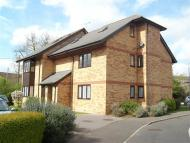 property to rent in Cavendish Gardens, Chelmsford, Essex