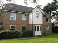 property to rent in Primrose Hill, Chelmsford, Essex
