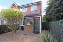 3 bed semi detached property in Cornflower Way...
