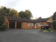 Bungalow for sale in Berrydale, Northampton
