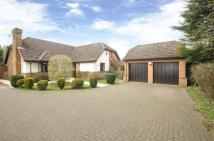4 bed Bungalow for sale in Glengary, Moulton...