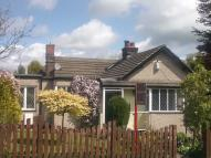 Detached Bungalow to rent in 13 Horderns Park Road...