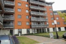 new Apartment to rent in Park Way, Chelmsford...