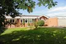 Detached Bungalow for sale in Grey Ladys, Galleywood...