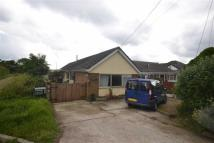 Semi-Detached Bungalow for sale in Mundon Road, Mundon...