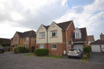 3 bed semi detached house in Curlew Avenue, Mayland...