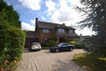 4 bedroom Detached property for sale in Imperial Avenue, Mayland...