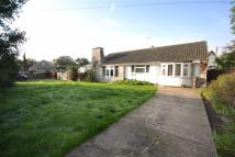 3 bed Detached Bungalow for sale in Tolleshunt D'arcy Road...