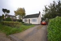 2 bedroom Detached Bungalow in Gorse Lane, Tiptree...