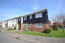 End of Terrace property to rent in Hunt Avenue, Maldon...