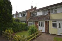 Willow Walk Terraced property for sale