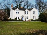Detached home to rent in Sloe Hill, Halstead...
