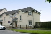 3 bedroom semi detached house to rent in Causewayhead Road...