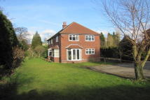 5 bedroom Detached property for sale in Askew Lane, Warsop...
