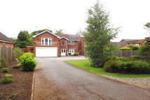 Detached home in Mapperley Plains...