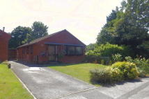 Bungalow for sale in Yew Tree Lane, Gedling...