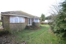 Detached Bungalow for sale in Rook Lane, Chaldon...