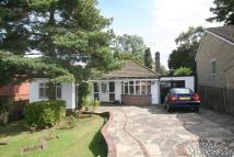Detached Bungalow in Keston Avenue, Coulsdon