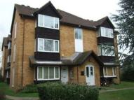 Studio flat to rent in Knights Manor Way...