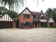 Village House in Hall Lane, Ingatestone...