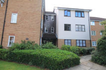 Flat to rent in Foxglove Court...