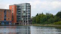 City Wharf Apartment to rent