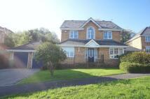 Plas y Mynach Detached house for sale