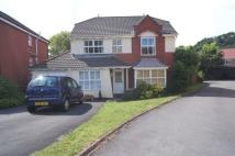 4 bed Detached home in Bryn Calch, Morganstown