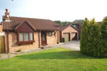 3 bedroom Bungalow in Llys Dyfodwg, Creigiau