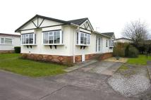 Detached Bungalow in Lodgefield Park...