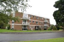 Cedar Court Flat to rent