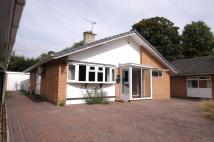 Detached Bungalow in Maidstone