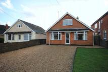 Detached Bungalow in FIRS ROAD, ALDERBURY...