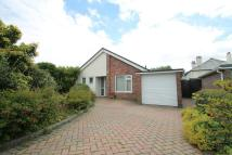 Tavistock Detached Bungalow for sale