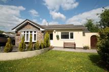 Detached Bungalow for sale in North Dimson, Gunnislake
