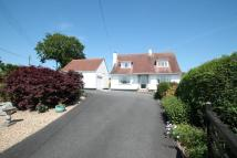 3 bedroom Detached house in Tavistock