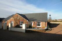 Tavistock Semi-Detached Bungalow for sale