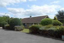 Bungalow to rent in Charlton Close, Evesham...