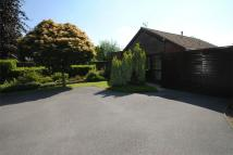 2 bed Detached Bungalow in Hoylake Close, NUNEATON...