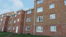 Flat to rent in Flat 1/2, Tullis Street...