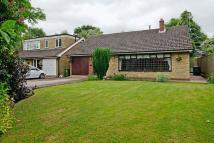4 bedroom Detached Bungalow in The Willow...