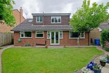 4 bedroom Detached Bungalow in The Willows...