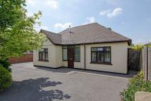 4 bed Detached Bungalow in Wimblebury Road, Cannock