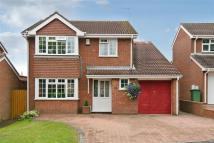 Detached property for sale in Condor Grove...