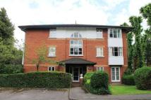 2 bed Flat to rent in Beechwood Grove, Acton...