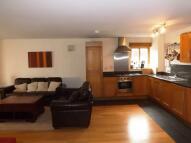 City Apartment to rent
