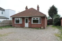 Detached Bungalow in Norwich Road, Poringland...