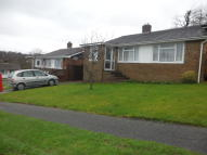 Semi-Detached Bungalow to rent in Holly Drive, Heathfield...