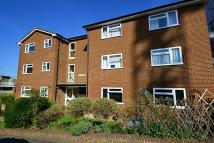 Ringers Road Flat to rent