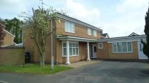 4 bed Detached home in Cheviot Close, Kettering...